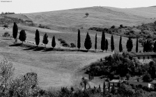 Prossima Foto: Val d'Orcia